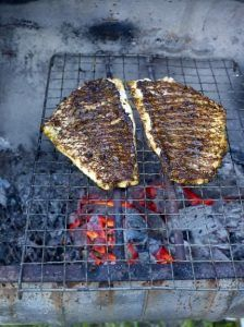 Cajun blackened fish steaks