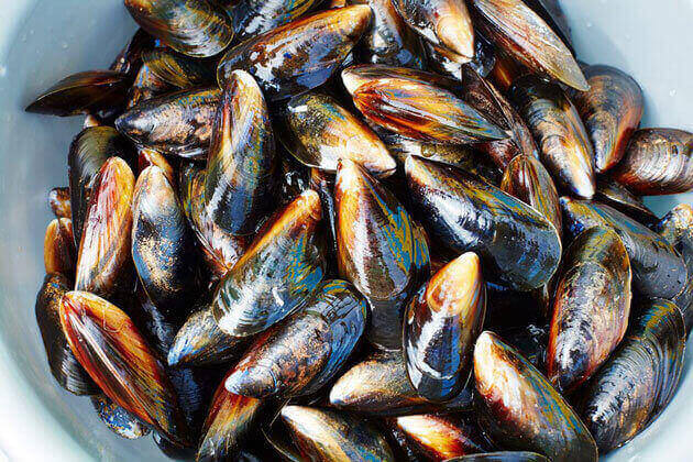 A bowl of mussels, mussels recipes