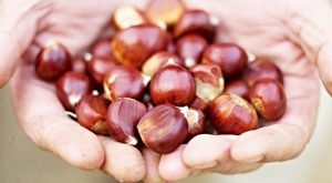 How to roast chestnuts: Jamie Oliver's food team
