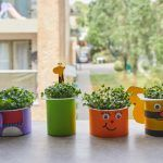 How to grow your own cress head