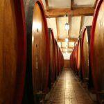 wine in barrels aligned in a row