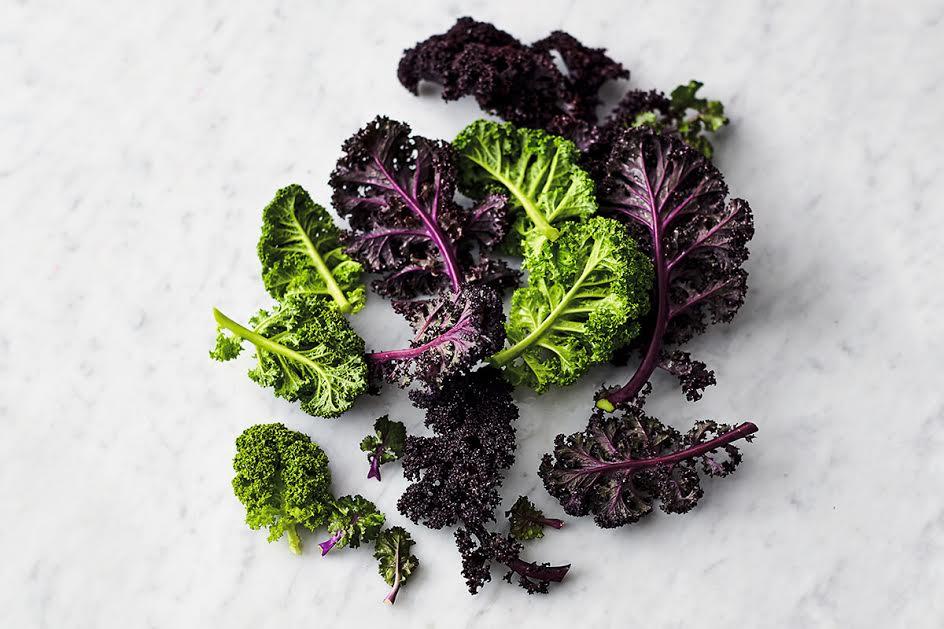 healthy kale leaves