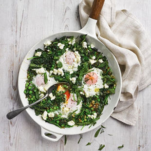 Green eggs (but no ham)