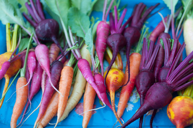 cake recipes feature - root vegetables scattered on table