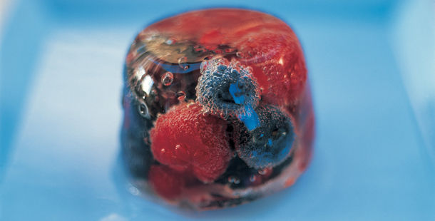 elderflower jelly ice with berries inside