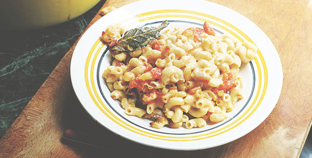 macaroni cheese with bacon and herbs on top