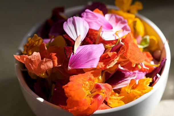 edible flower petals in a bowl