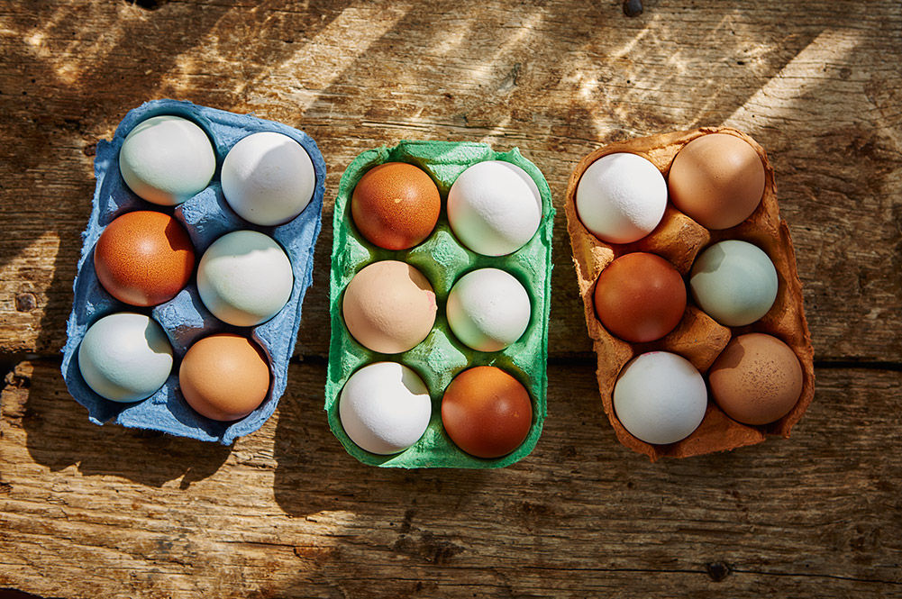 animal welfare and eggs - 3 boxes filled with eggs