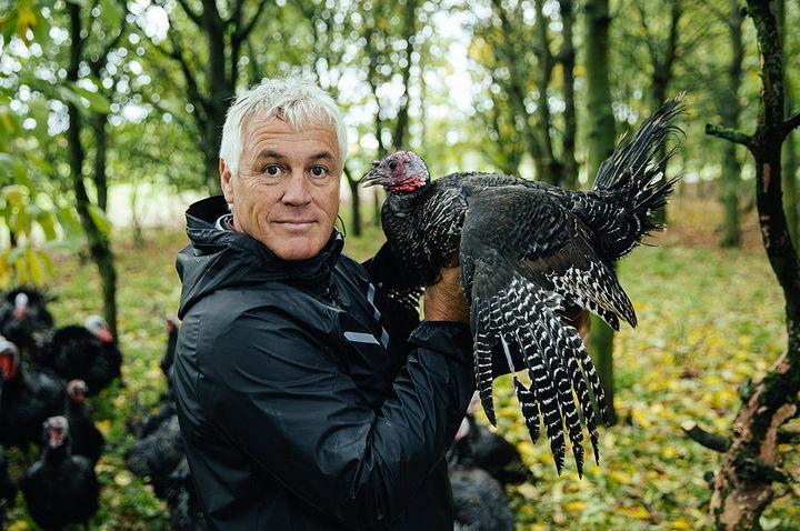 turkeywelfare2