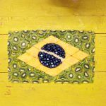 brazilian flag made out of cut fruit