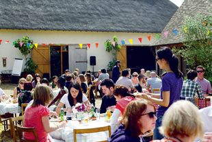 The best summer party guide