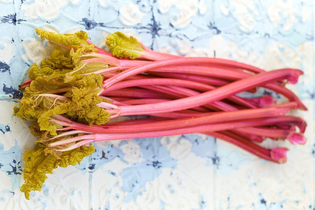 rhubarb stems grouped together