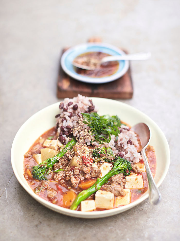 Chinese steak & tofu stew