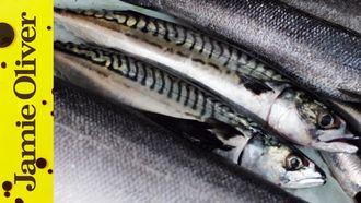 How to fillet sardines: Jamie Oliver