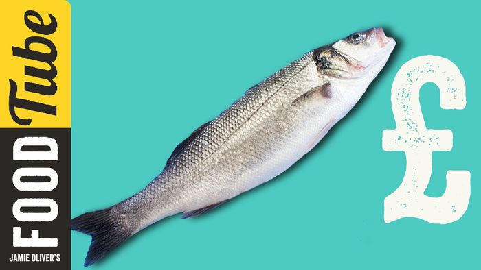 How To Buy The Best Fish