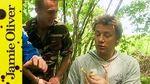 Wild mushroom on toast with shaved truffle: Jamie Oliver