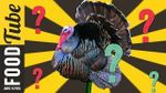 Why do we eat turkey at Christmas: Max Shadbolt