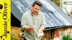 Homemade haddock fishcakes: Jamie Oliver